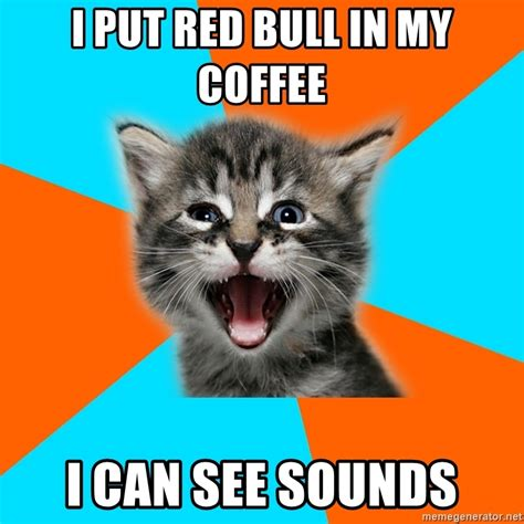 I Can See Sounds Meme - i put red bull in my coffee i can see sounds ib kitten