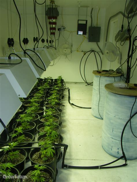 grow room setup grow setup previous work marijuana grow rooms