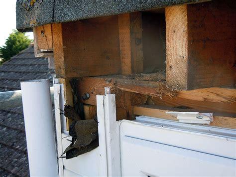 Dormer Roof Repair Dormer Roof Flat Roofing Repair News