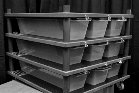 Racks For Reptiles by V 15 Reptile Rack Water Tray 4th Dimension Locking