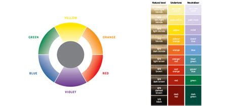 loreal hair color wheel loreal hair color oloom
