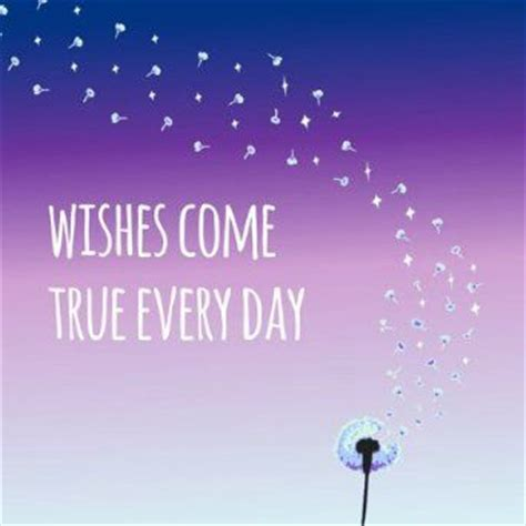 Wishes Come True 29 Best Wishes Do Come True Make A Wish Images On