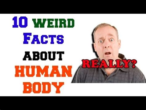 50 wacky things humans do amazing facts about the human wacky series books 10 facts about our amazing human i bet you