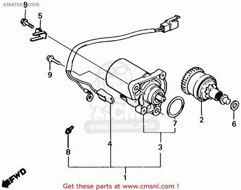 1986 honda spree wiring diagram wiring diagrams