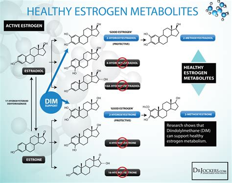 Detox Tips For Xenoestrogen by 12 Tips To Balance Estrogen Levels Naturally