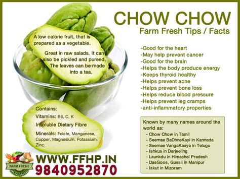 vegetables benefits health benefits of chow chow ffhp in health and