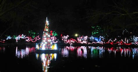 Violet S Silver Lining Things To Do In Ohio Cincinnati Cincinnati Zoo Lights Hours
