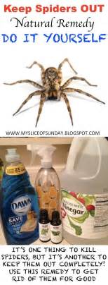 how to keep spiders out of basement diy spider killer remedy to keep spiders out of