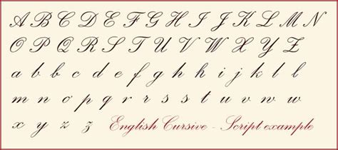 cursive calligraphy alphabet english cursive letters