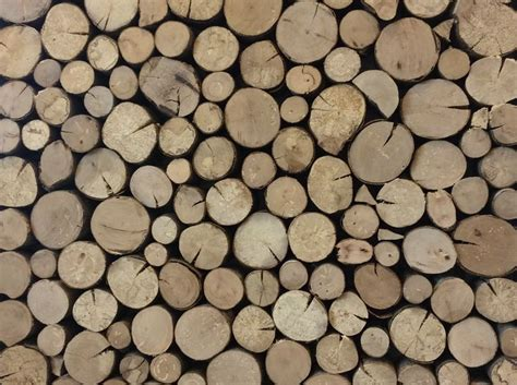 best firewood for fireplace 17 best images about firewood on fireplaces