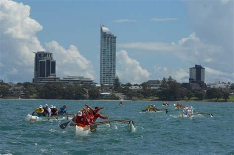boating education nz join takapuna boating club auckland s premier paddling