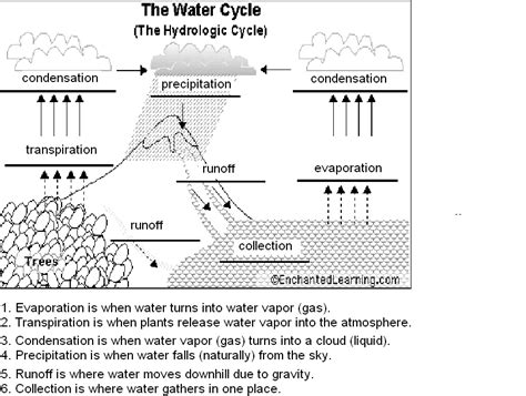Water Cycle Worksheet by Search Results For Water Cycle Diagram Worksheet Calendar 2015
