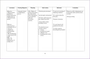 Nursing Care Plan Template by Nursing Care Plan Template Slenotary