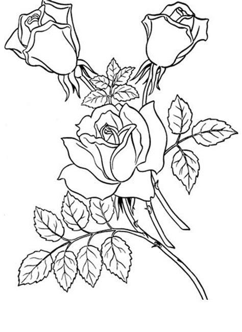 imagenes de flores para imprimir gratis rosa para colorear www imgkid com the image kid has it