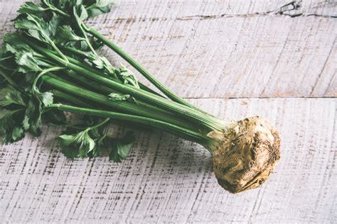 is celery a root vegetable 5 fantastic seasonal vegetables you may not about