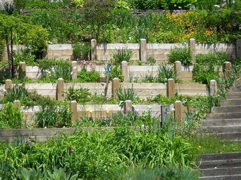 Hillside Gardening Ideas Gardening On A Hillside Hillside Tiered Garden Gardens