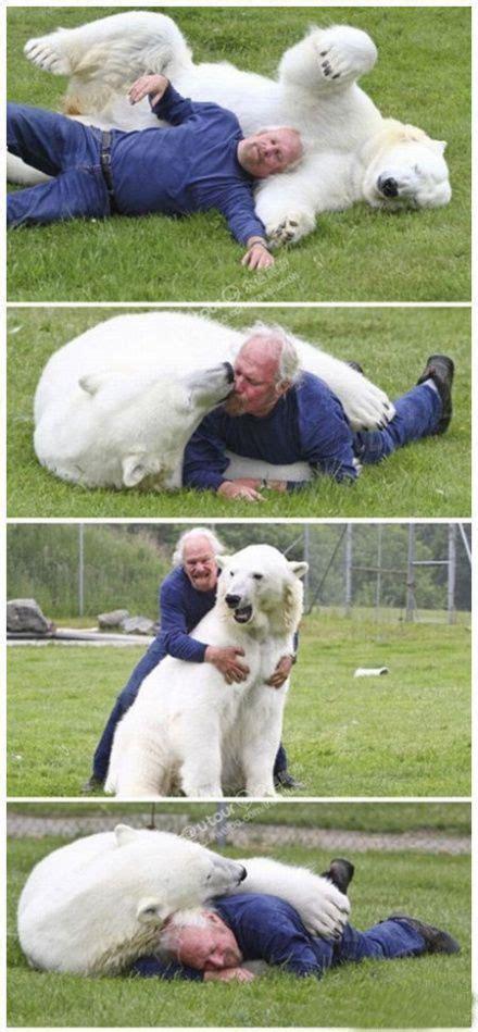 fools        pet polar bear