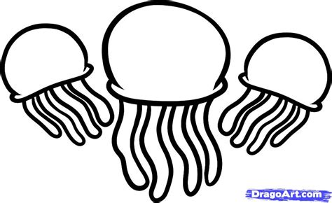 jellyfish coloring page how to draw jellyfish jellyfish step by step fish