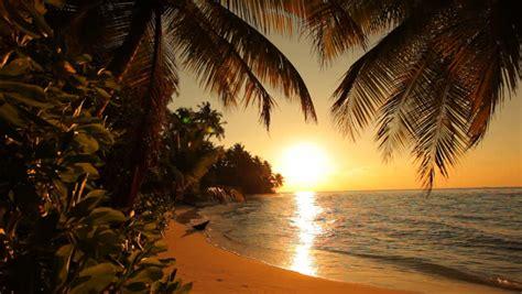 drawing sunset  desert island stock footage video