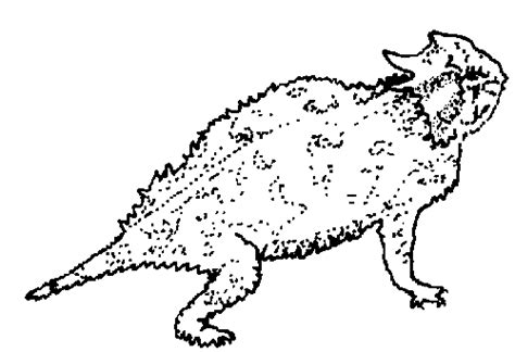 coloring page horned lizard tpwd kids texas symbols reptile