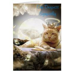 cat sympathy card zazzle