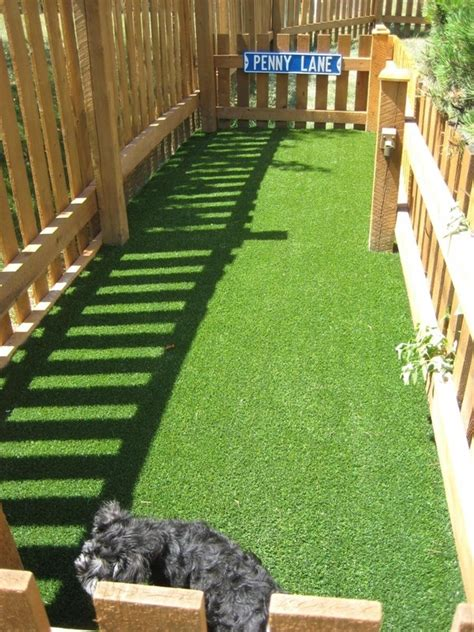 make a dog run in your backyard dog runs for the home outdoors pinterest