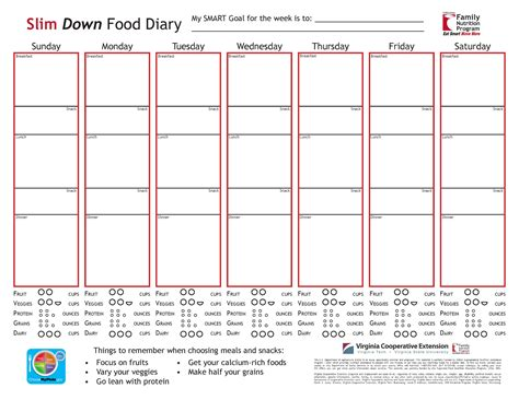 mayo clinic diet journal template food diary eat smart move more