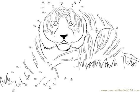 printable tiger dot to dot eye of the tiger dot to dot printable worksheet connect