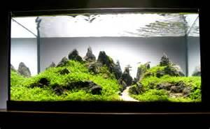 Fish Tank Aquascape Designs Aquascaping World Magazine Interview With Peter Kirwan