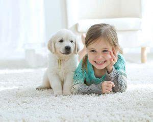 come pulire i tappeti in casa come pulire i tappeti di casa per evitare le allergie