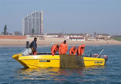 boat cruise wilson wharf shark patrol boat adventure