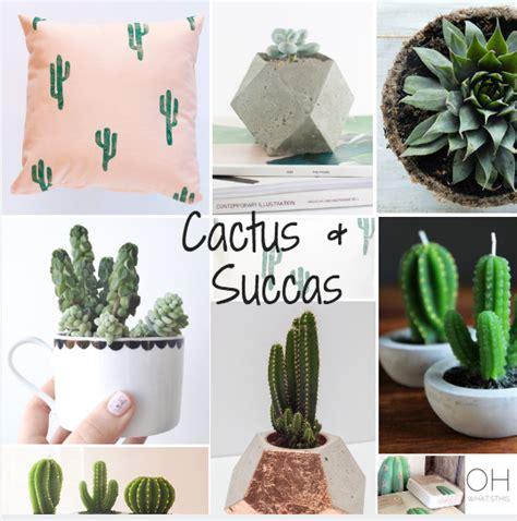 ohwhatsthis cactus love cactus indoor plants plants