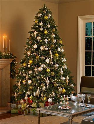 colorado mountain christmas tree colorado mountain spruce tree http www balsamhill colorado mountain spruce by