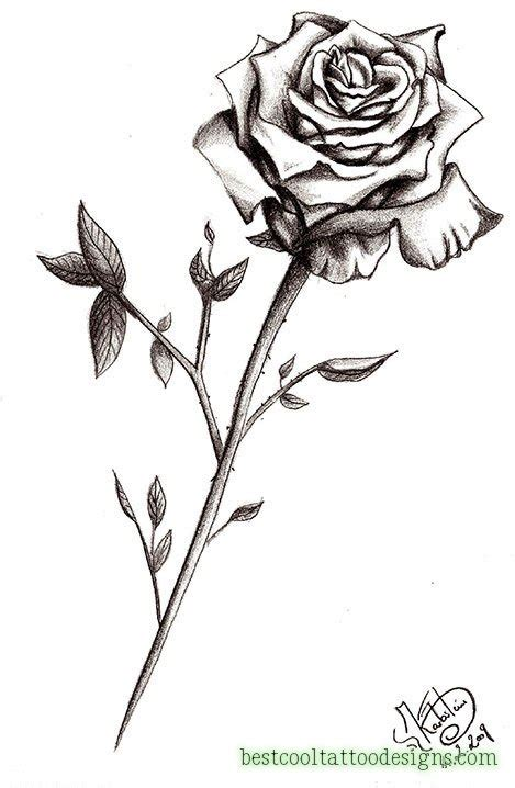 white rose tattoos designs designs