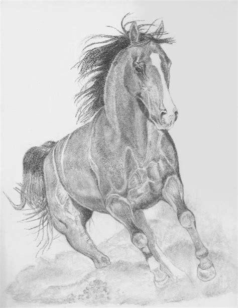 Caballo A Lapiz Dibujos De Animales | dibujos a l 225 piz de caballos dibujos a lapiz