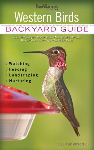 southern birds backyard guide southern birds by bill thompson