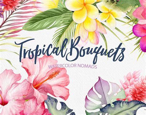 clipart fiore oltre 25 fantastiche idee su fiore ad acquerello su