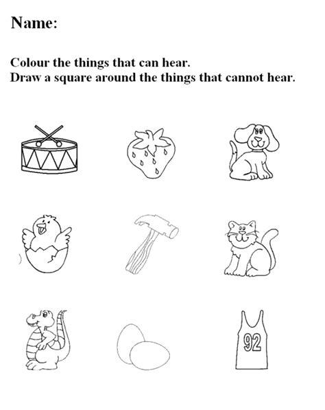 free preschool printables five senses kiddo shelter