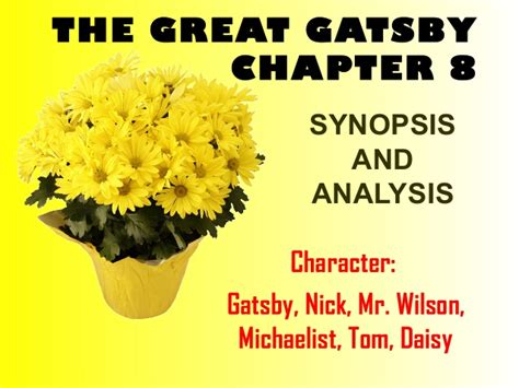 the great gatsby chapters 8 and 9 synopsis great gatsby chapter 8