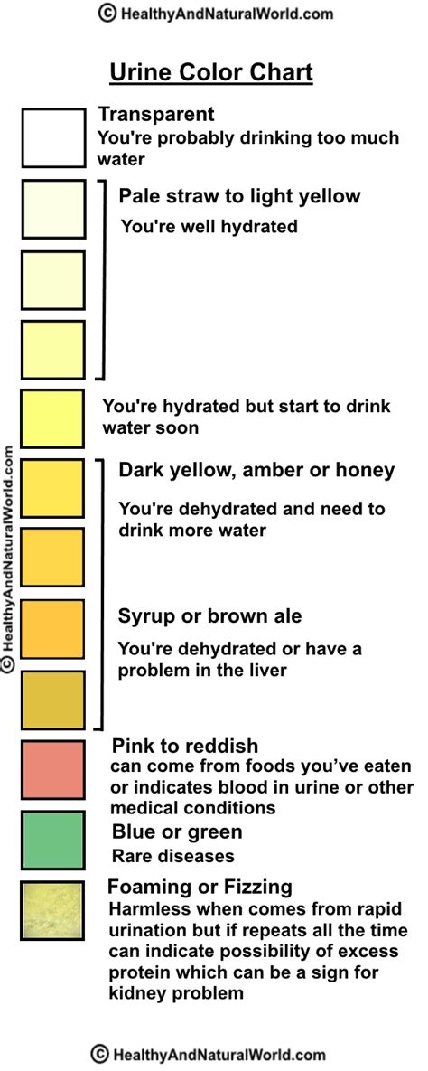 color of urine chart urine color chart