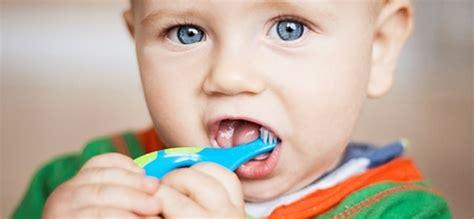 si鑒e v駘o enfant a arte de escovar os dentes do beb 234 dicas e sugest 245 es