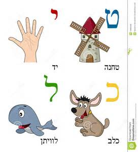 Hebrew alphabet for kids letters teth yod kaph and lamed with four