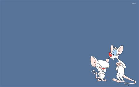 pinky wallpaper pinky and brain pinky and the brain wallpaper cartoon