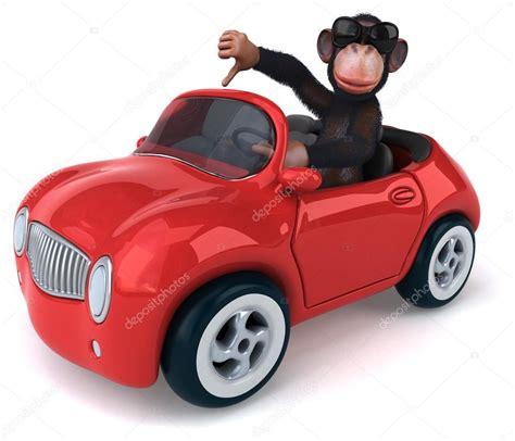 car divertenti scimmia divertente in auto foto stock 169 julos 83559190