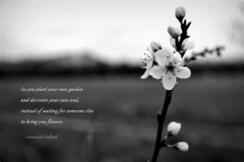 Plant Your Own Garden by Plant Your Own Garden By Equilis On Deviantart
