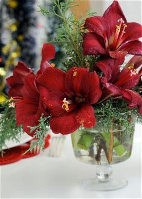 composizioni fiori natale decorazioni floreali natalizie greenchillicaterers
