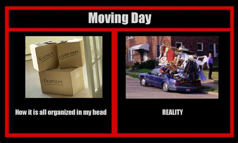 Funny Moving Memes - funny moving day memes for sanity s sake
