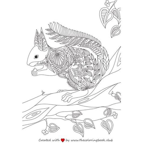 the coloring book for adults you ve probably never colored it 1000 images about coloring books on
