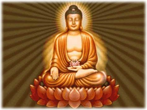 buddha and lotus lotus buddhism