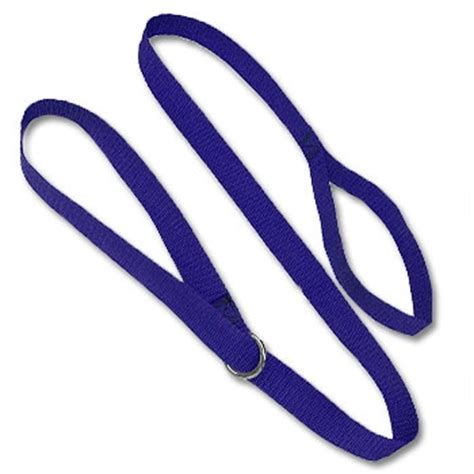 slip leads basic show leash